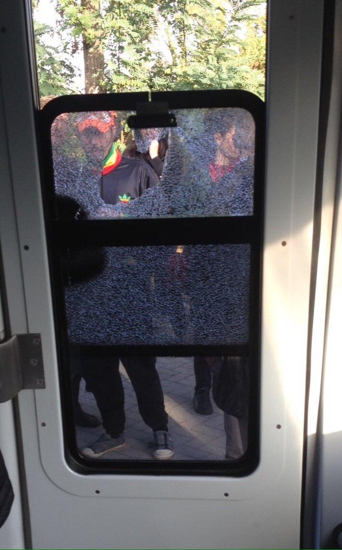 Roma lido passeggero spacca il vetro della cabina di for Planimetrie della cabina di log