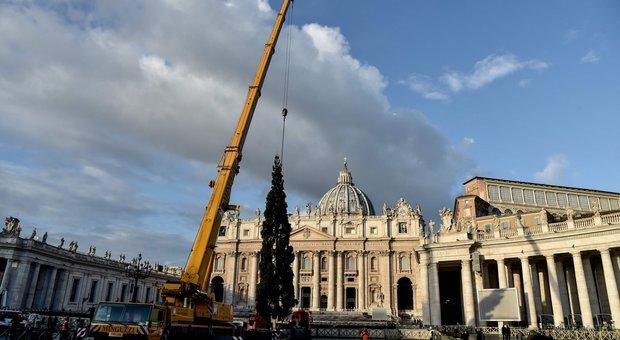 Albero Di Natale Roma 2019.Roma Arrivato L Albero Di Natale A San Pietro